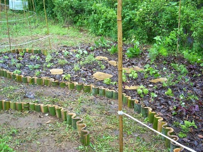 A pathway waiting to be filled with bamboo chips AND newly planted meadow